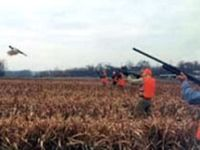 Hopewell Pheasant Hunting Central Pennsylvania