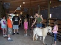 Pine View Pony Rides in PA