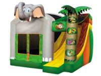 Boing! Inflatable Rentals Springfield PA