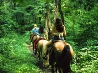 Rolling Hills Horse Riding Trail Bridgeville PA