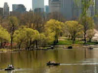 central-park-top-25-attractions-ny
