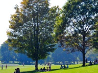 prospect-park-top-25-attractions-ny