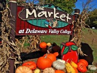 the-market-at-delaware-valley-college-seasonal-party-places-pa