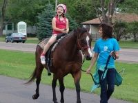 Buckingham Valley Riding Lessons Buckingham PA