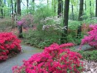 jenkins_arboretum_in_pennsylvania