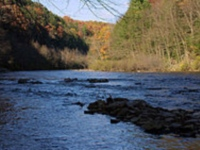 lehigh_gorge_state_park_river_in_pa