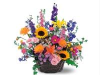 mccarthy_florist_in_pa