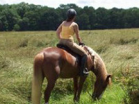 Horseback Trail Riding in Philadelphia