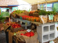 philadelphia-farmers-market-greensgrow-farm