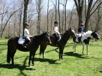 Philadelphia Horseback Riding Lessons