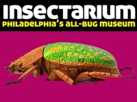 specialty-museums-philadelphia-insectarium