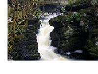 bushkill-falls-day-trips-for-women-in-PA