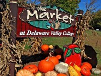 the-market-at-delaware-valley-college-seasonal-farms-in-pa