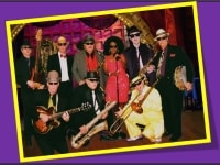 jive-jump-wail-blues-bands-for-hire-in-PA